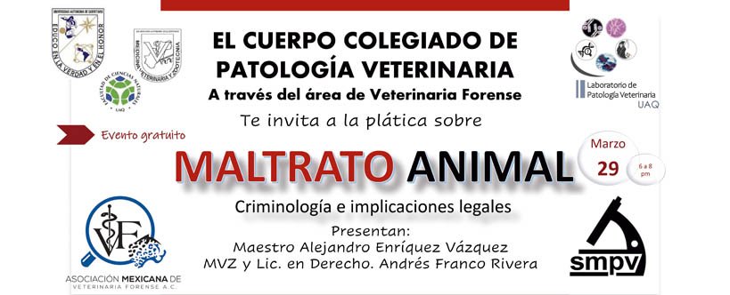 eventos de la smpv maltrato animal